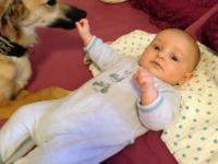 Tiergestützte Arbeit, Anthea liebt Babys