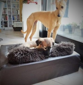 Dena und Lina